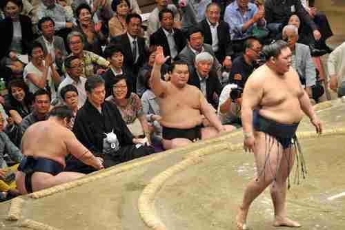 鶴竜、横綱初の反則勝ち 白鵬が物言い : nikkansports.com