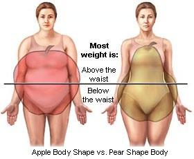 骨盤、腰幅が広い&大きい人!