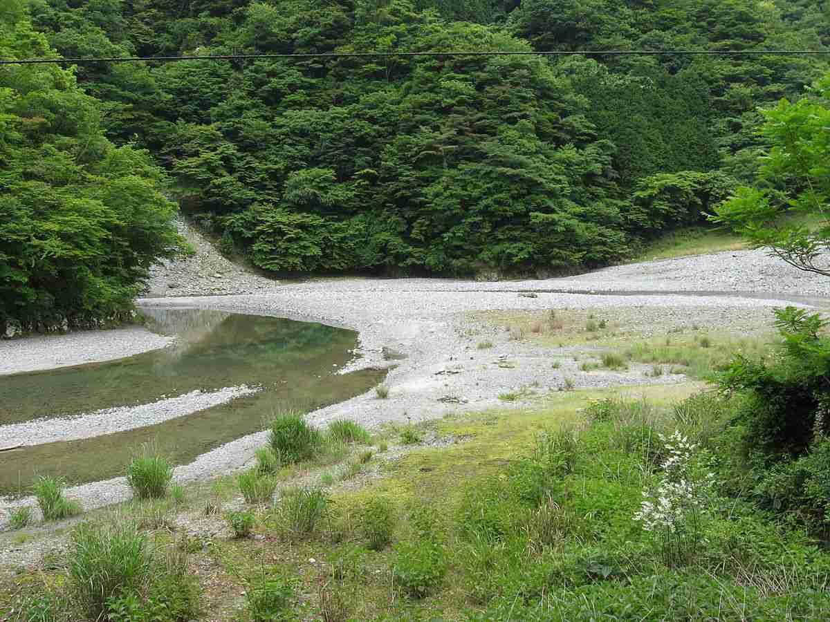玄倉川水難事故 - Wikipedia