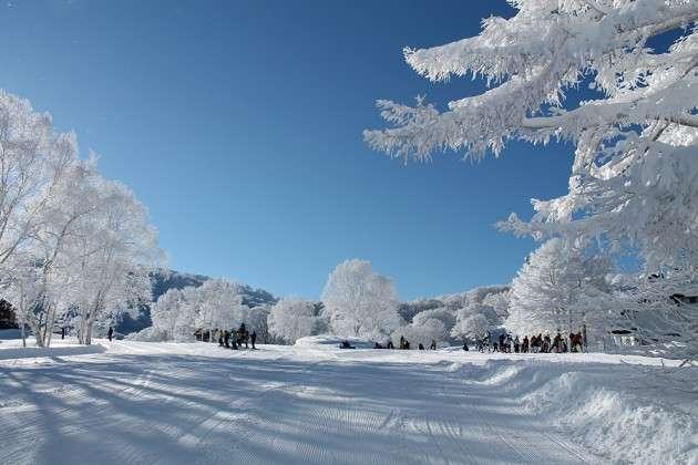 今年のスノーシーズンは長野で決まり!長野県のスキー場おすすめランキング   tabit [タビット]   上質な旅を愛する人のためのトラベルメディア