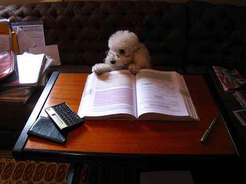 「子ども部屋」ない方が成績が上がる!「勉強は食卓・リビングで」「親とのコミュニケーションが大事」