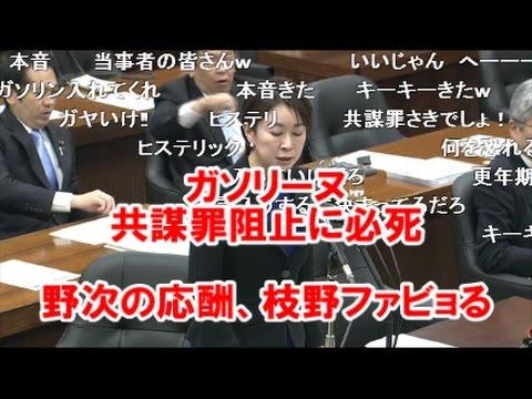 3/31国会 山尾しおり テロ法阻止に必死 - YouTube