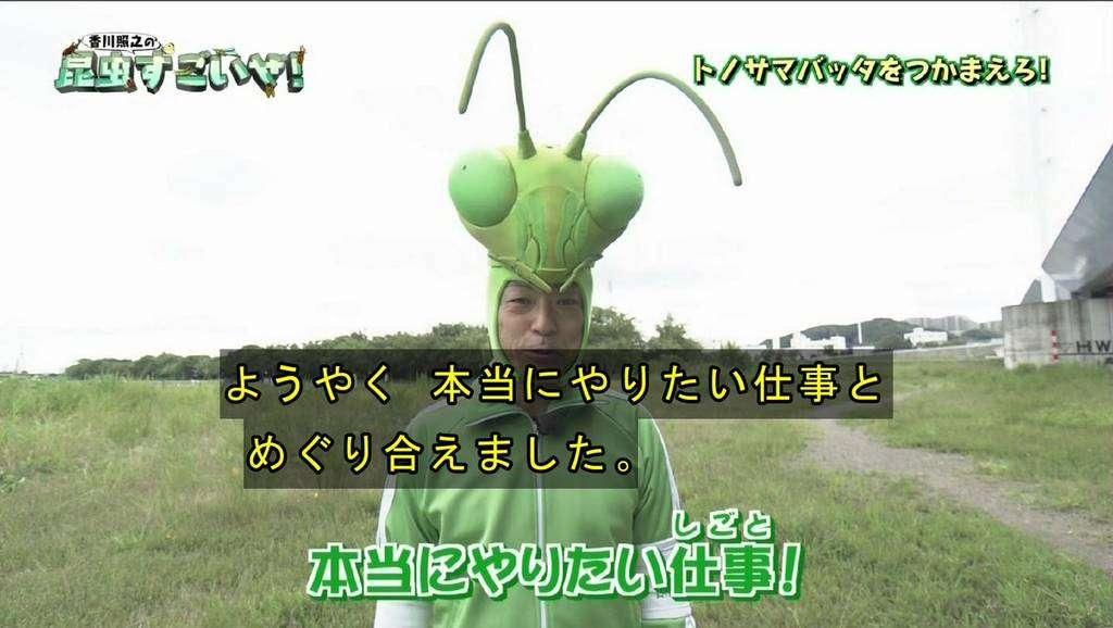 カマキリ先生再び!「香川照之の昆虫すごいぜ!」第2弾が5月5日に放送決定 次はモンシロチョウがすごいぜ
