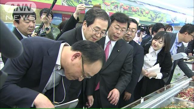 公明「軽減税率導入に確信」 韓国を視察