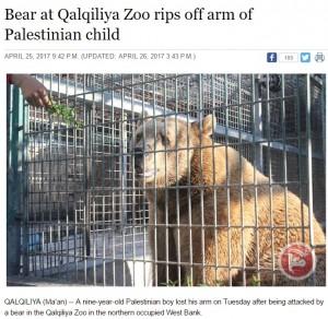 遠足で動物園に来た9歳少年、クマに腕を食べられる(パレスチナ)