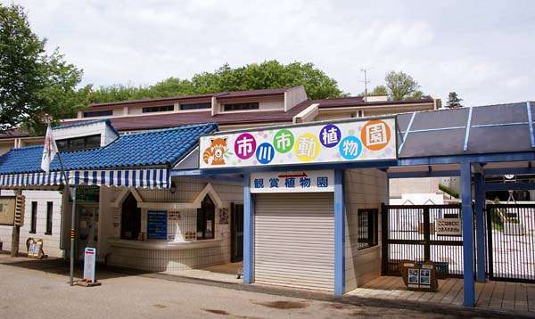 オススメの動物園、水族館、牧場