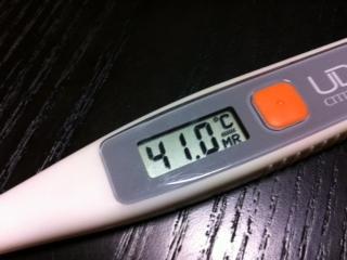 熱、最高記録は何度ですか?