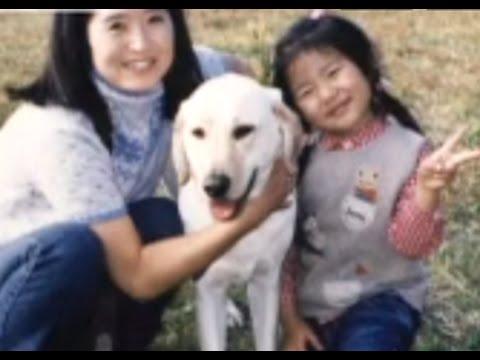 とある盲導犬の引退 ~出会い、そして涙の別れ~ - YouTube