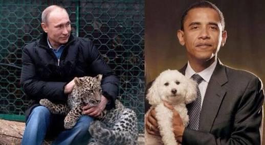 芸能人と動物のキュンとする画像