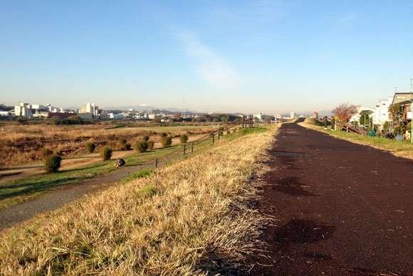 過度のジョギングは寿命を縮める恐れがあることが判明