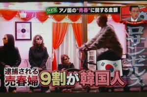 日本でHIV感染者が増加してる原因は韓国から売春婦がやって来てエイズウイルスを撒き散らしてるからだ!:貴方の知らない日本