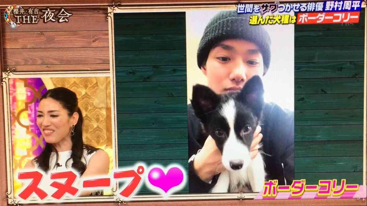 野村周平、番組で購入の仔犬にメロメロ!さっそくインスタで公開!