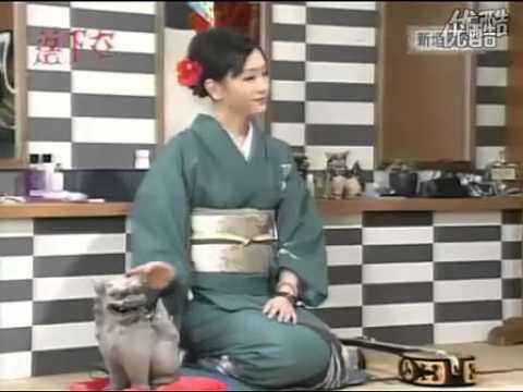 新垣結衣   落下女/新垣師匠 - YouTube