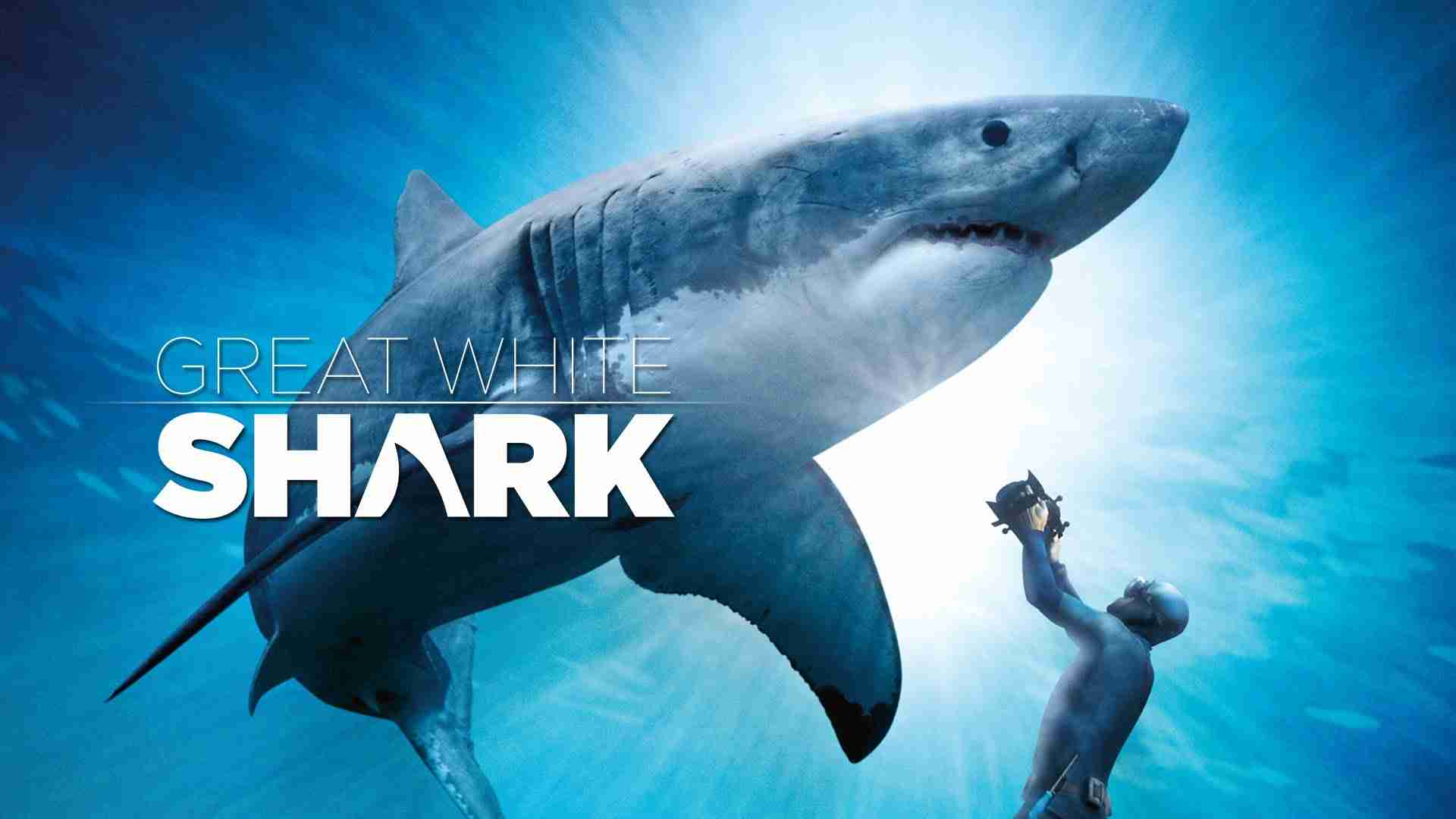 Great White Shark Official Trailer IMAX and Digital 3D - YouTube