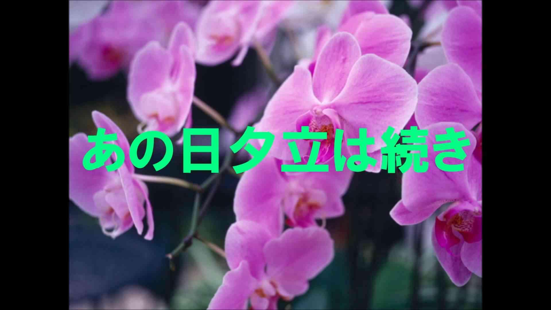 GARNET CROW 夕立の庭 - YouTube