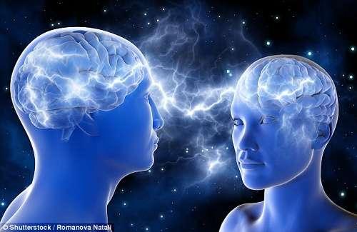 女性は男性より脳が小さく知能指数が劣るとイギリスメディアが報じる