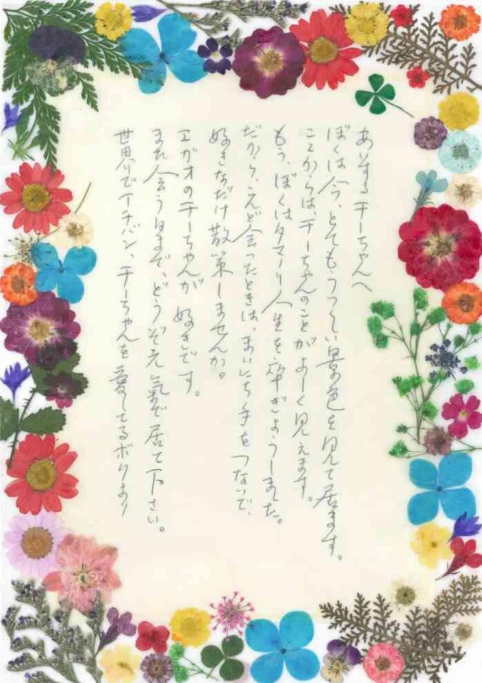 ドラマ10「ツバキ文具店〜鎌倉代書物語」観てる方!