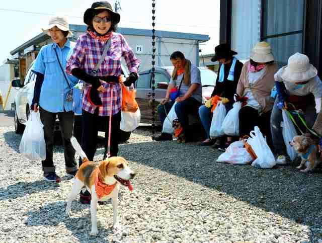 飼う人には家族でも… 災害時のペット避難、どう対応?:朝日新聞デジタル
