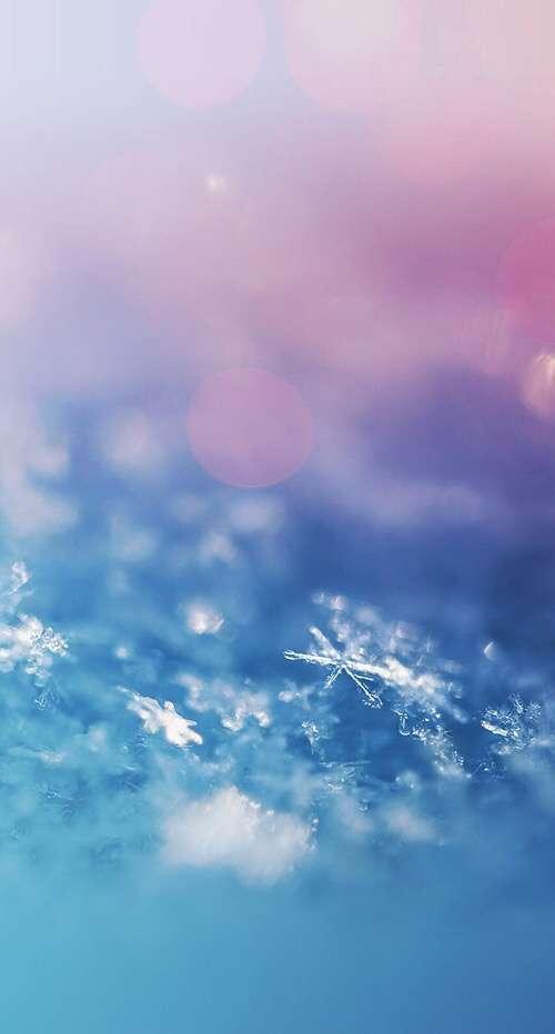涼しくなる画像下さい。