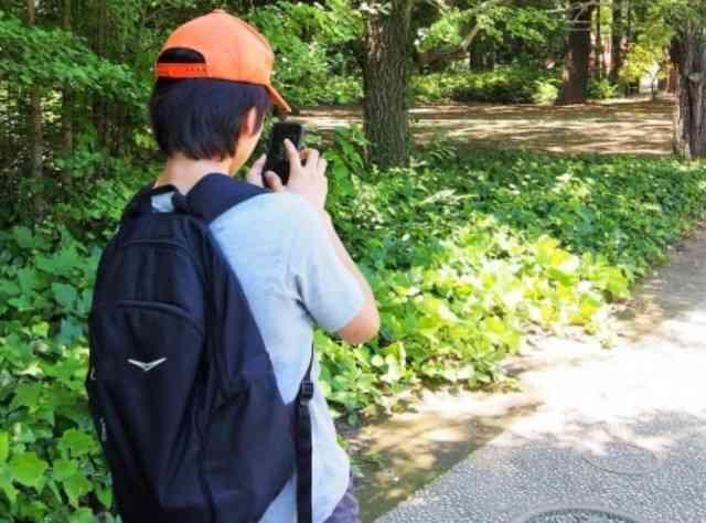 名古屋の公園に『歩きスマホ絶対殺す道』が存在していた…!? - ViRATES [バイレーツ]