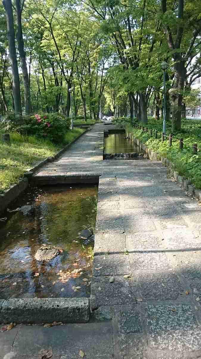 名古屋の公園に『歩きスマホ絶対殺す道』が存在していた…!?