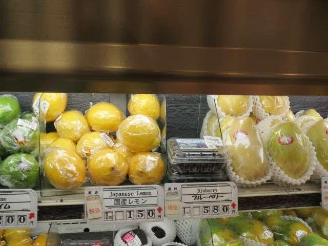 レモンは野菜か果物か?|minchoの家庭果樹園計画