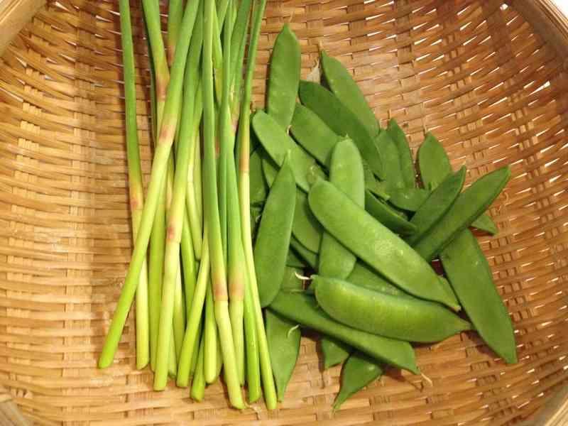 ニンニクの芽が収穫できたので食べてみました。 – chengasdの日記話題まとめ情報