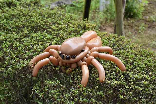 【閲覧注意】凄い!これ風船なの?バルーンアートで作った生き物たちが凄い!