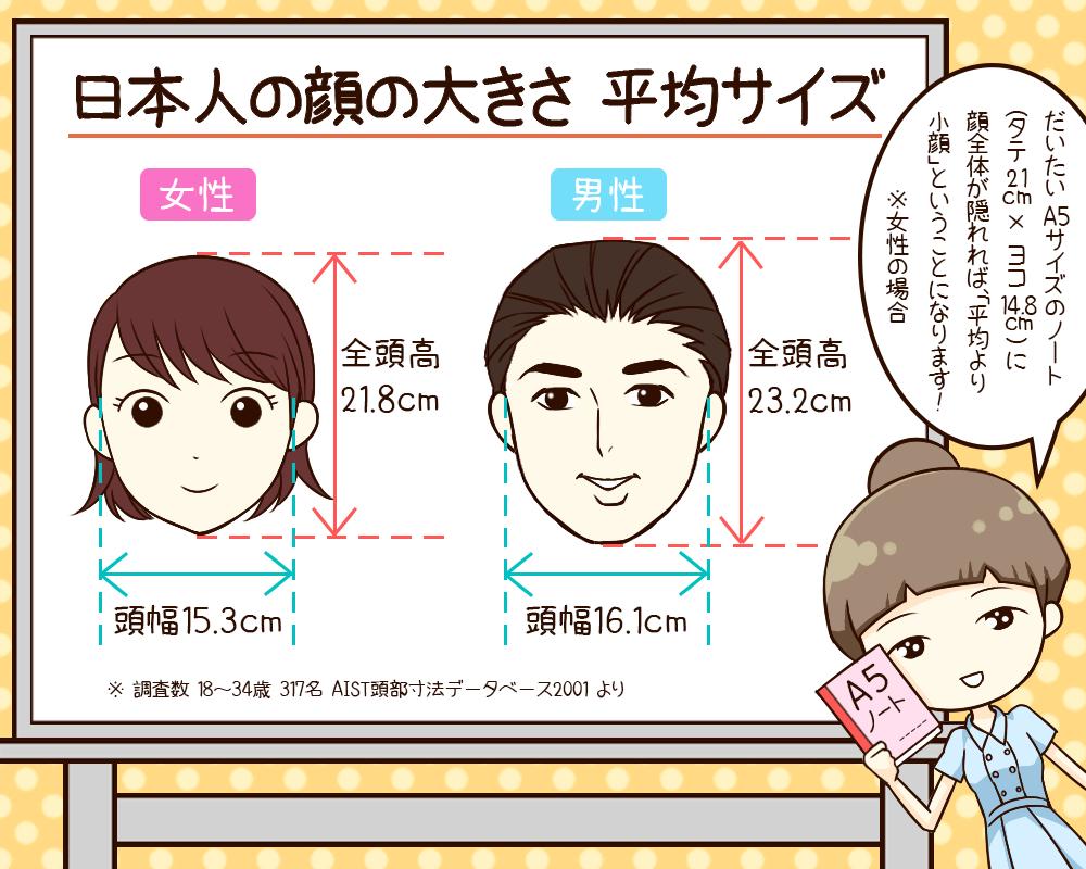 芸能人の具体的な顔の大きさ