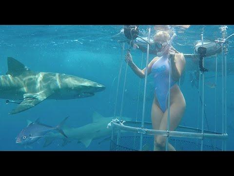 【海外発!Breaking News】フロリダ沖での撮影で米AV女優がサメに襲われる 流血映像も公開 | Techinsight(テックインサイト)|海外セレブ、国内エンタメのオンリーワンをお届けするニュースサイト