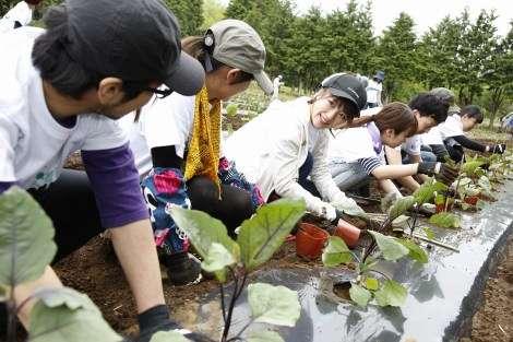 高橋みなみ、ボランティアにサプライズ登場 福島で農作業をお手伝い