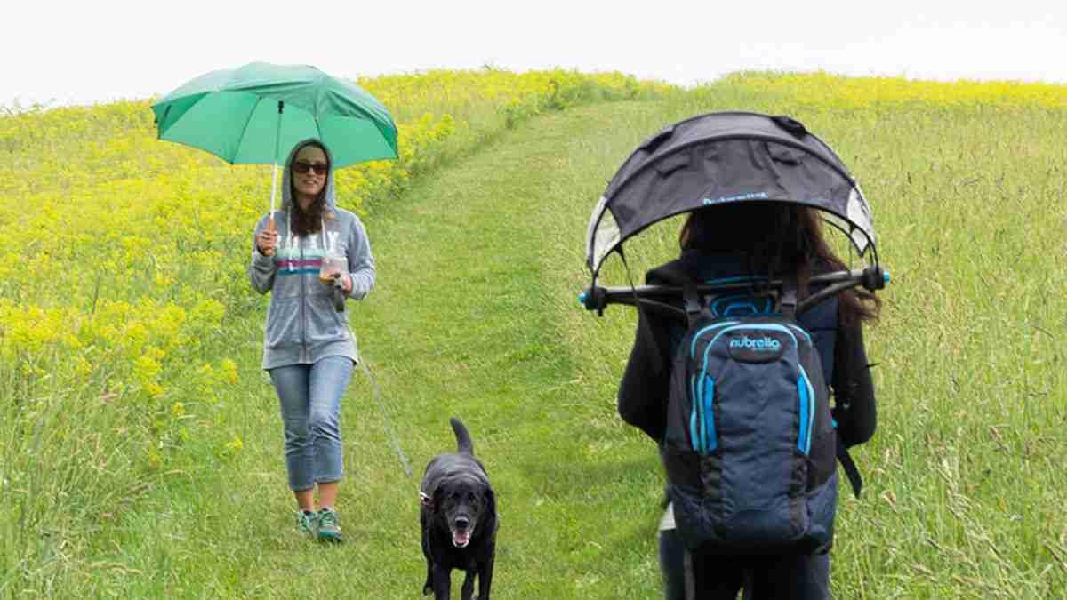 ハンズフリーなこの「傘」を笑っていられるのも、今のうちだ! | TABI LABO