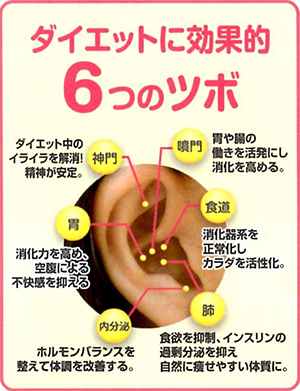 耳つぼダイエット‼