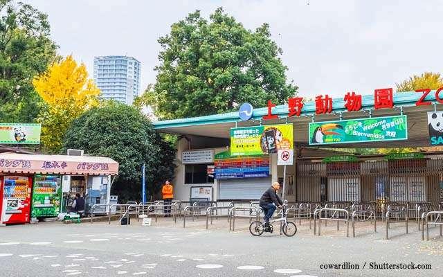 70年続いた上野こども遊園地、「やむを得ず」閉鎖 理由に悲しみの声集まる  –  grape [グレイプ]