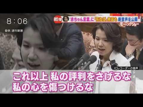 <絶叫暴言>豊田真由子様の「赤ちゃん言葉」新音声が公開 - YouTube