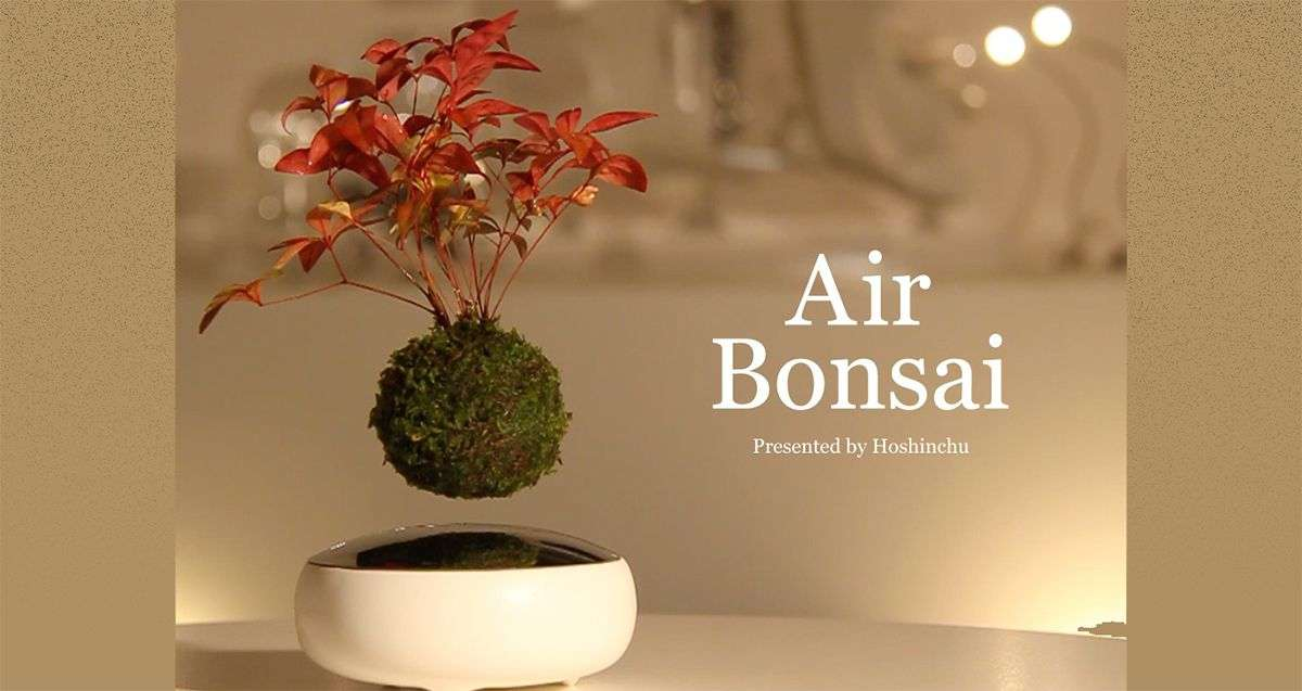 磁力で宙に浮く「Air盆栽」がカッコ良すぎる