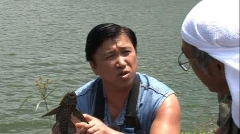 スギちゃん、沖縄の純淡水在来魚7種を発見「ホントに奇跡」 | ORICON NEWS