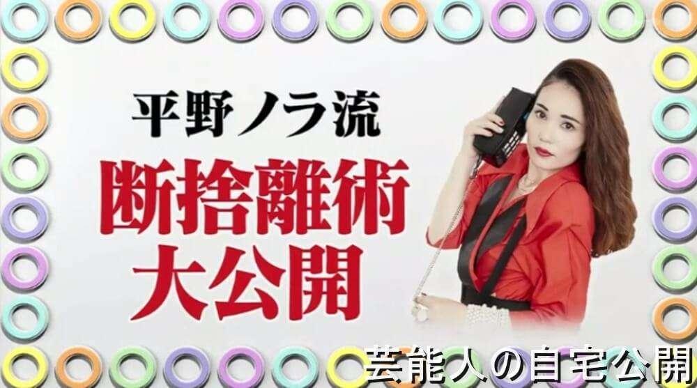 【女芸人の自宅】平野ノラさんの超断捨離自宅【画像あり】