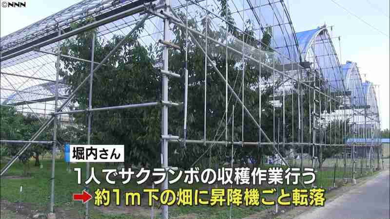 サクランボ収穫中 昇降機に挟まれ男性死亡|日テレNEWS24