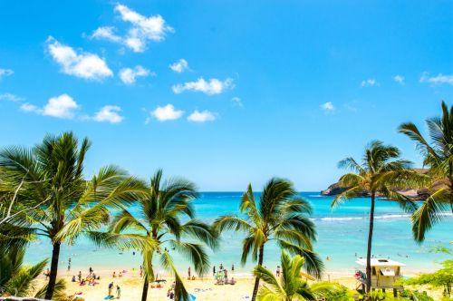 知らないと罰金・逮捕の可能性も 「ハワイでのNG行為」4つ - ライブドアニュース