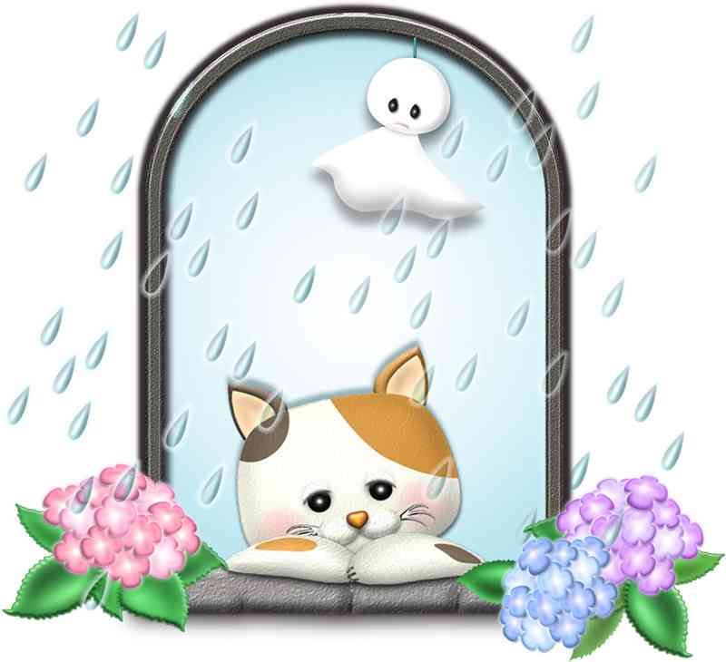 梅雨入り前にしておくこと!