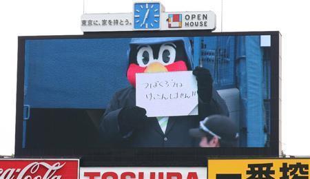 NMB48の須藤凛々花に対抗?! つば九郎「けっこんしません!!」 (サンケイスポーツ) - Yahoo!ニュース