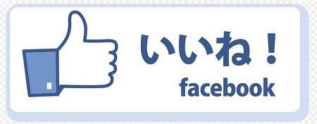 フェイスブック中傷投稿に「いいね!」、スイスで有罪に…日本ではどうなのか?
