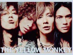 顔面偏差値の高いグループ、バンドは?
