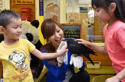 「かわいいねカァちゃん」カラスのヒナ保護、人気者に 旭川の美容室