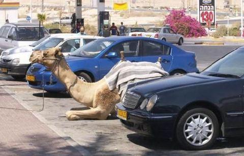 駐車場でのこだわり