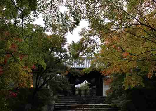 曼殊院の幽霊の掛け軸は鳥肌立ち過ぎて写真なんて撮れないよ。 : 京都の外に住む京都好きのブログ