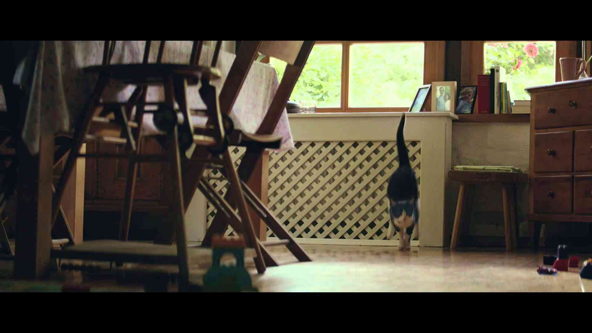 YKK AP CM 赤ちゃんと猫篇 60秒 - YouTube