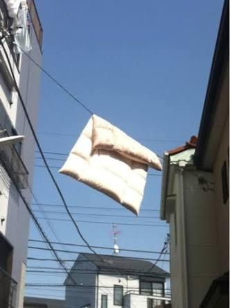 布団、干してますか