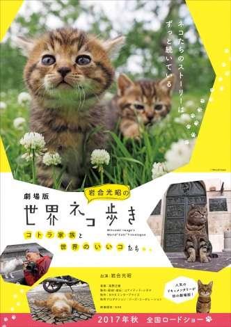NHK BSプレミアムの猫番組が映画化 『岩合光昭の世界ネコ歩き』今秋公開へ